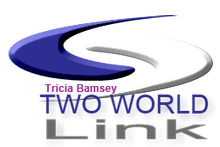 Tricia Bamsey's Two World Link